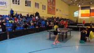 Read more about the article Elena TROSHNEVA – Xin LIU ETTU CUP Полуфинал, 2017/2018 Видео
